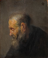 Rembrandt Oil study of an old man