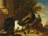 Melchior d'Hondecoeter A hen with peacocks and a turkey