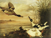 Johannes Spruijt - Ducks at a lake