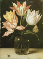 Ambrosius Bosschaert the Elder Glass with four Tulips