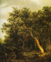Jacob van Ruisdael Entrance to a Wood