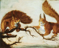 Attributed to Jan Brueghel the Elder Two Squirrels