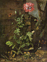 Otto Marseus van Schrieck Still Life with Poppy, Insects, and Reptiles
