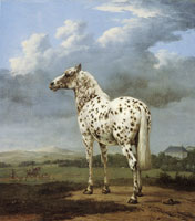 Paulus Potter The Spotted Horse