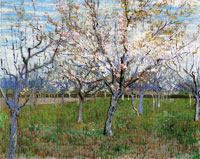 Vincent van Gogh Orchard with Blossoming Apricot Trees