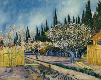 Vincent van Gogh Orchard Surrounded by Cypresses