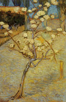 Vincent van Gogh Little Blossoming Pear Tree