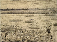 Vincent van Gogh Marsh with Water Lilies
