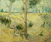 Vincent van Gogh Trees on a Slope