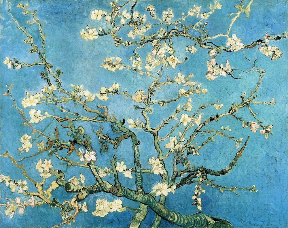 Vincent van Gogh - Branches of a Blossoming Almond Tree