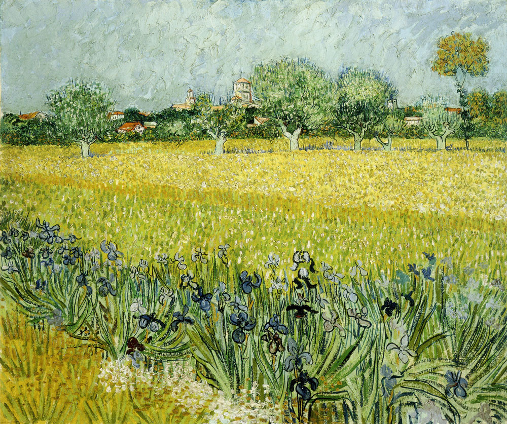 Vincent van Gogh - Field with Flowers