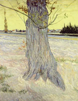 Vincent van Gogh Trunk of an Old Yew Tree