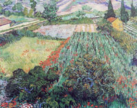 Vincent van Gogh Fields with Poppies