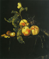 Willem van Aelst Still Life of Fruit