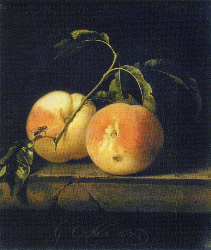 Willem van Aelst - Two Peaches