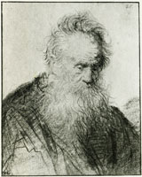 Rembrandt Bust of a Bearded Old Man