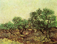 Vincent van Gogh Olive Picking