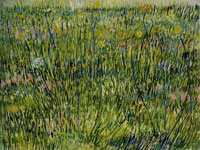 Vincent van Gogh Patch of Grass