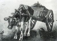 Vincent van Gogh Cart with black ox