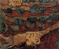 Vincent van Gogh Olive Orchards against a Slope of a Hill