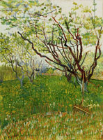 Vincent van Gogh The Flowering Orchard