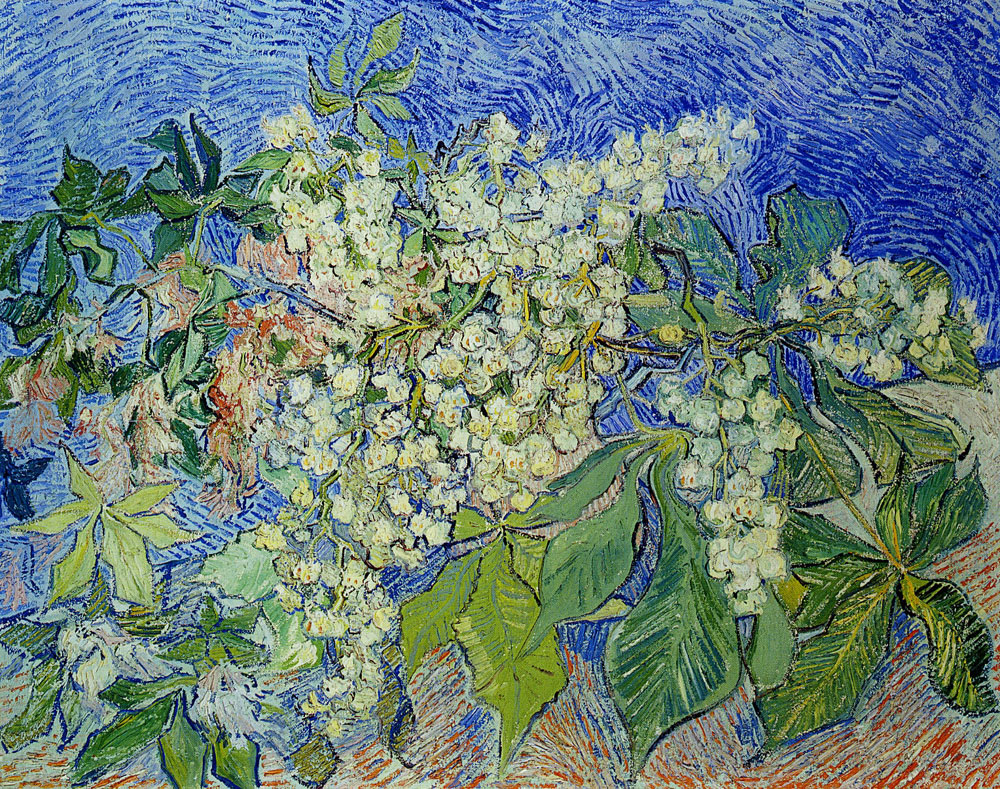 Vincent van Gogh - Blossoming Chestnut Branches