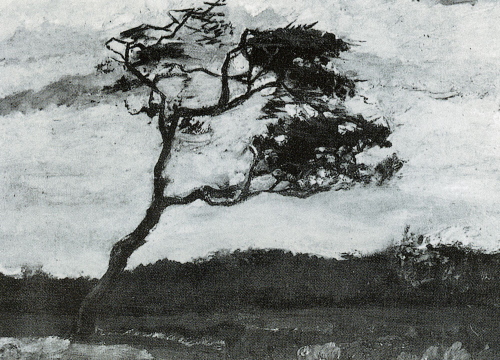 Vincent van Gogh - A windswept tree