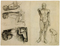 Vincent van Gogh - Drawing Model: Muscles of the Male Body and Five Sketches of Sitting Nude Girl