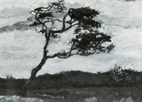 Vincent van Gogh A windswept tree