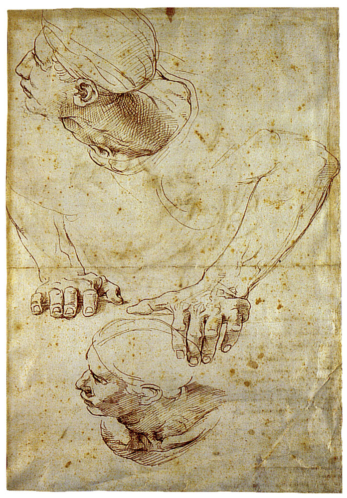 Raphael - Study for the Disputa; Man on the Right