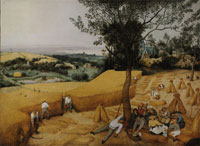 Pieter Bruegel the Elder The grain harvest