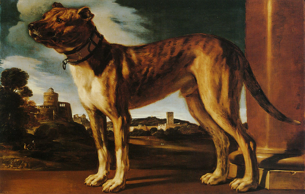 Guercino - Portrait of a Dog