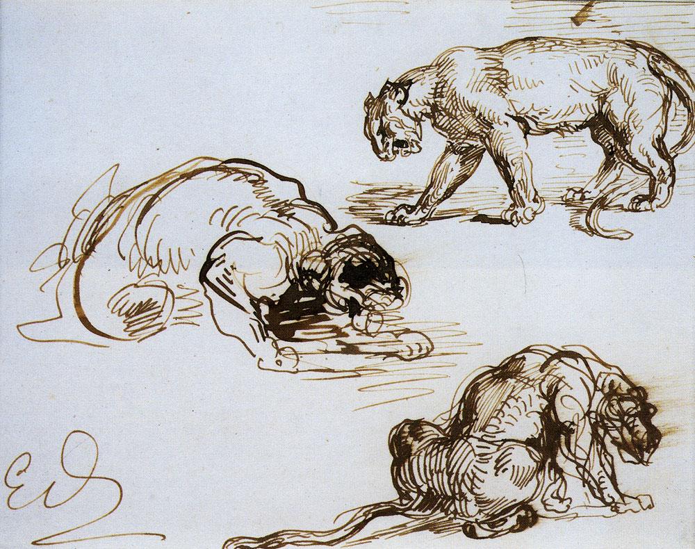 DELACROIX, EUGENE; Study of Lions - History of Art ...