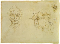 Leonardo da Vinci Studies of the Head