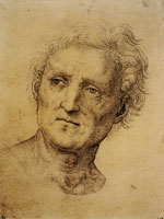 Raphael Head of a Middle-Aged Man