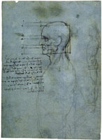 Leonardo da Vinci The Proportions of the Male Head; A Standing Male Nude