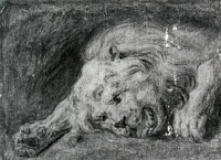 Copy after Peter Paul Rubens Lion's Head