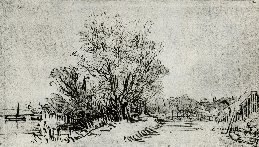 Pieter de With - A Clump of Trees