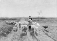 Anton Mauve A Shepherdess and Her Flock