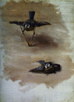 John Singer Sargent Studies of a Dead Bird