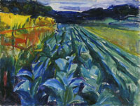 Edvard Munch - Cabbage Field