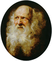 Peter Paul Rubens Head of an Old Man with Curly Beard