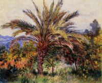 Claude Monet - A Palm Tree at Bordighera