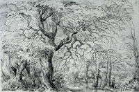 After Pieter Bruegel the Elder Trees on water