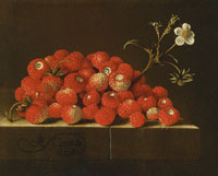 Adriaen Coorte Wild Straberries on a Ledge