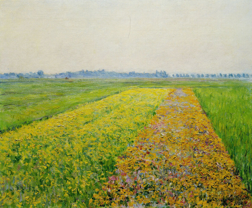 Gustave Caillebotte - The Gennevilliers Plain, Golden Fields