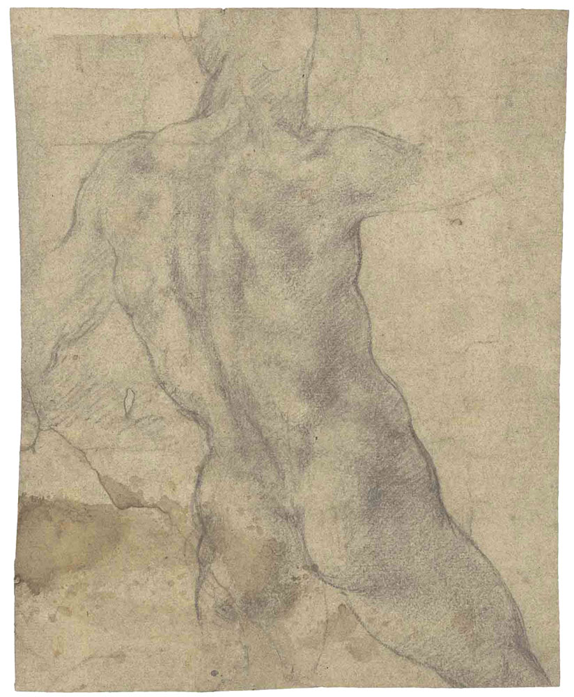 Michelangelo - Male nude seen from behind