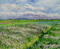 Gustave Caillebotte The Fields, a Plain in Gennevilliers, Study in Yellow and Green