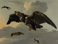 Melchior d'Hondecoeter An eagle, swallow, snipe and finch in flight