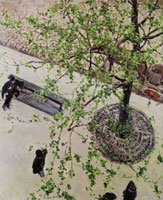 Gustave Caillebotte The Boulevard Seen from Above